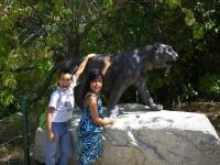 2011 Cat Haven_5