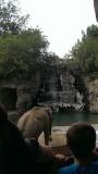 Zoo 2013_10