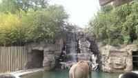 Zoo 2013_11