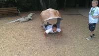 Zoo 2013_22