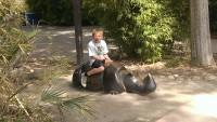 Zoo 2013_25