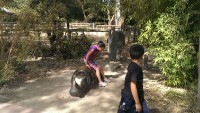 Zoo 2013_37