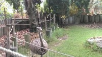 Zoo 2013_44