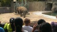 Zoo 2013_9
